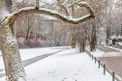 Couples dans l'amour marchant dans la neige Images libres de droits