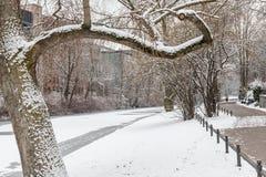 Couples dans l'amour marchant dans la neige Image stock