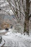Couples dans l'amour marchant par la rivière dans la neige Photographie stock libre de droits