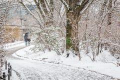 Couples dans l'amour marchant par la rivière dans la neige Photos stock