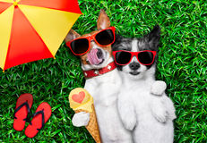 Couples dans l'amour sous le parapluie Photos libres de droits