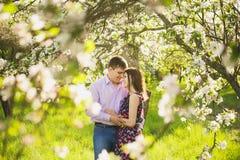 Couples dans l'amour tenant au printemps le jardin de floraison Images stock