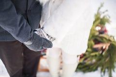 Couples dans l'amour tenant des mains dehors le jour neigeux d'hiver images stock