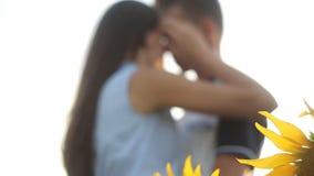 Couples dans l'amour dans un domaine des tournesols s'étreignant le soir au coucher du soleil banque de vidéos
