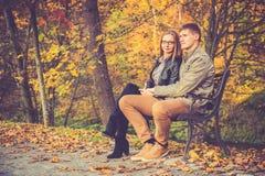 Couples dans la chute d'or photographie stock libre de droits