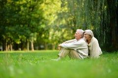 Couples dans la forêt d'automne Image stock