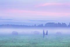Couples dans le domaine brumeux Photo libre de droits