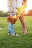 Couples dans le pique-nique Images libres de droits