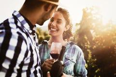 Couples dans le vignoble avant la moisson Images libres de droits