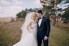 Couples dans les bois et la ville Photo libre de droits