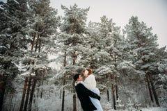 Couples dans une forêt de pin Images libres de droits