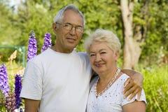 Couples de bonheur Images stock