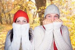 Couples de chute d'automne Photographie stock libre de droits