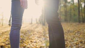 Couples de jeunes amants tenant tendrement les mains de chacun, appréciant la date banque de vidéos