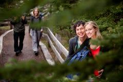 Couples de journal de forêt Photo stock