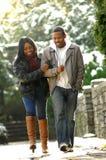 Couples de l'hiver Photographie stock libre de droits