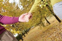 Couples de marche Images stock