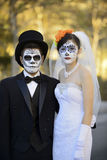 Couples de mariage Images libres de droits