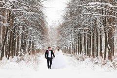 Couples de mariage au jour d'hiver Photos libres de droits