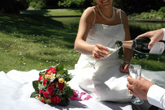 Couples de mariage ayant le champangne Photos stock