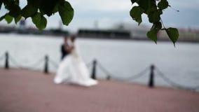 Couples de mariage dans la tache floue au ralenti banque de vidéos