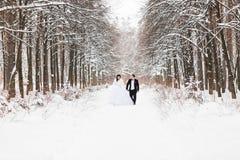 Couples de mariage en hiver Image libre de droits