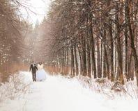 Couples de mariage en hiver Photographie stock libre de droits