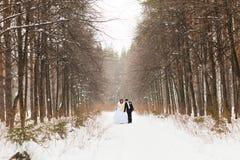 Couples de mariage en hiver Images libres de droits