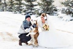 Couples de mariage et un chien mignon dans l'horaire d'hiver Photographie stock