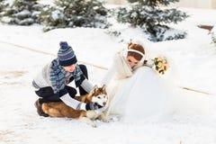 Couples de mariage et un chien mignon dans l'horaire d'hiver Photos stock