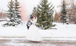 Couples de mariage extérieurs en hiver Images stock