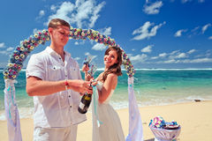 Couples de mariage juste mariés Photo stock