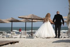 Couples de mariage marchant, arrière Photographie stock