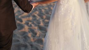 Couples de mariage prenant des mains sur le coucher du soleil banque de vidéos