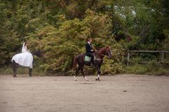 Couples de mariage sur des chevaux Photo libre de droits