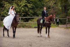 Couples de mariage sur des chevaux Images libres de droits
