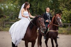 Couples de mariage sur des chevaux Photographie stock