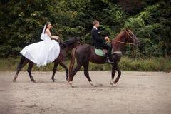 Couples de mariage sur des chevaux Photographie stock libre de droits