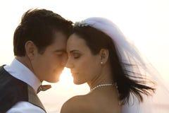 Couples de nouveaux mariés Photo stock