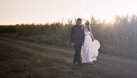 Couples de nouveaux mariés au coucher du soleil Image stock