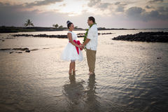 Jeunes mariés de plage Image stock