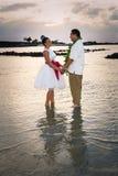 Jeunes mariés au crépuscule Photographie stock