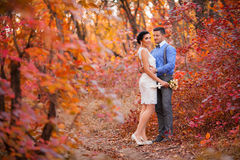 Couples de sourire étreignant en parc d'automne Jeunes mariés heureux dans la forêt, dehors Images stock