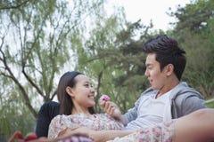 Couples de sourire dans l'amour ayant un pique-nique dans le parc, se couchant sur la couverture et tenir une fleur de fleur Photo libre de droits