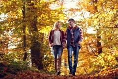 Couples de sourire dans l'amour marchant en parc un jour ensoleillé Photos libres de droits