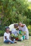 Couples de sourire heureux faisant du jardinage avec leur fille Photo libre de droits