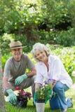 Couples de sourire occupés à faire du jardinage Images stock