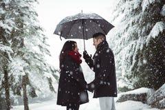 Couples de sourire sous le parapluie se tenant dans la forêt Photos stock