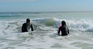 Couples de surfer préparant pour surfer sur la vague 4k banque de vidéos