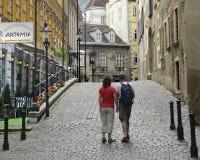 Couples de Vienne photos stock